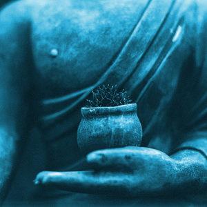 La sublimation, l'apanage des sages sociétés